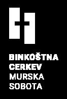 MS-logo-2017 w-02